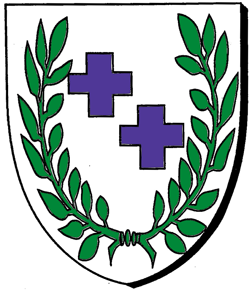 Carreg shield.png